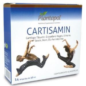CARTISAMIN 14amp. de PLANTAPOL